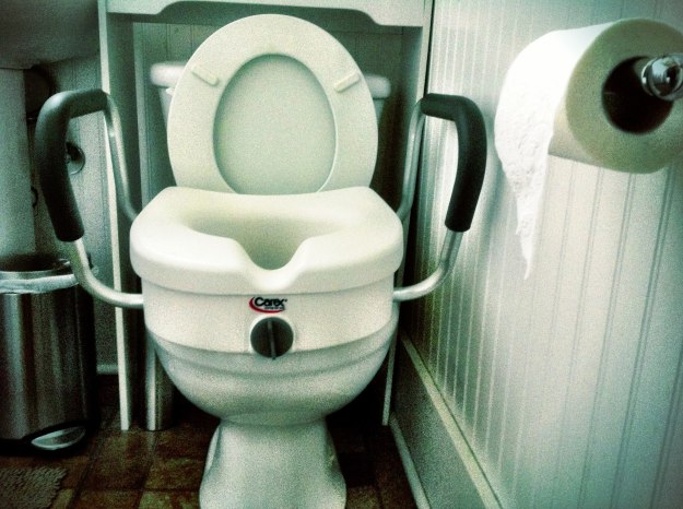 Yesterday I installed this raised toilet seat for Grandma.
